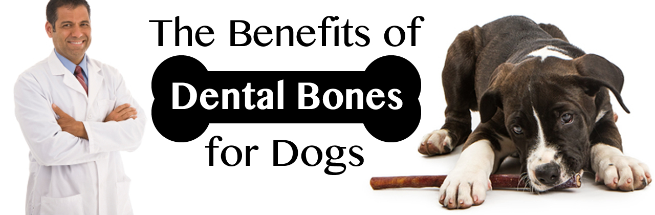 Dental Bones for Dogs